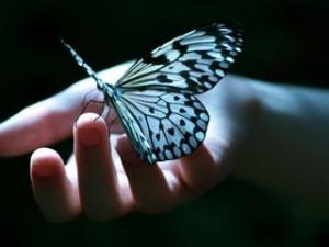 mano-y-mariposa